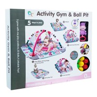 Activity Gym Ball Pit