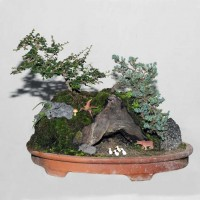 Landscape Bonsai (Fukein Tea and Juniper)