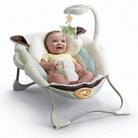Fisher Price My Little Lamb Deluxe Infant Seat MCH022