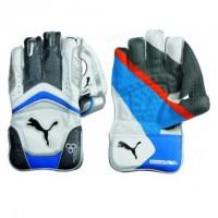 PUMA 4000 Wicket Keeper Gloves