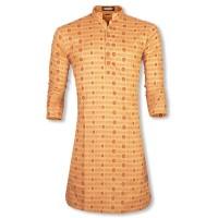 Puja  Exclusive Printed Cotton Punjabi SW168