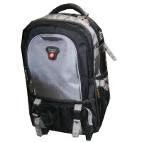 "Power 18"" and 20"" Trolley Backpack Ash"