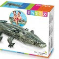Intex Crocodile Swiming Tube