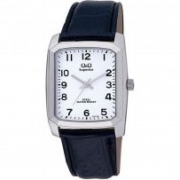 Q&Q P332J304Y Men's Watch